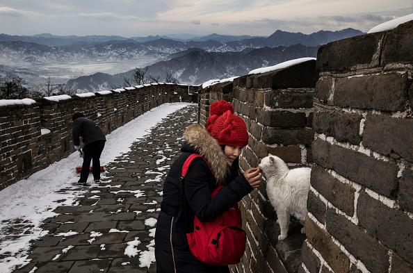 世界遺産「China Daily Life」:写真・画像(8)[壁紙.com]