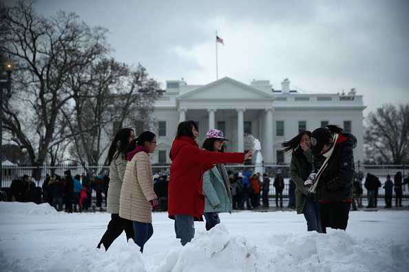 Tourism「DC Snowstorm Shuts Down Federal Government」:写真・画像(8)[壁紙.com]