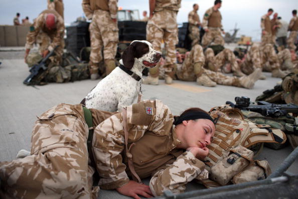 Taliban「British Paratroopers Conduct Operation 'Southern Beast' In Afghanistan」:写真・画像(0)[壁紙.com]