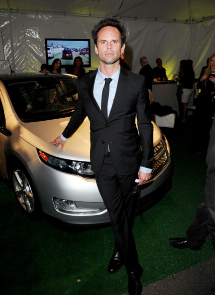 The Avalon - Hollywood「Global Green USA's 9th Annual Pre-Oscar Party Supporting Green Schools and Green Communities - Red Carpet」:写真・画像(13)[壁紙.com]