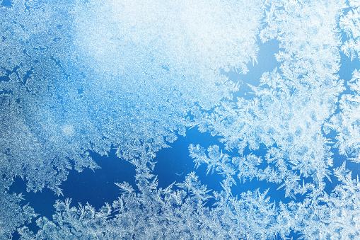 Floral Pattern「Defocused blue background with ice flowers」:スマホ壁紙(3)