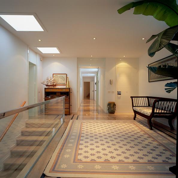 Entrance「View of an elegant carpet in a passageway」:写真・画像(6)[壁紙.com]
