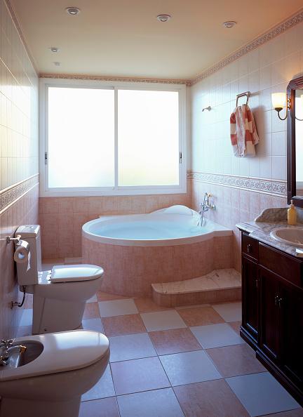 Toilet Paper「View of an elegant bathroom」:写真・画像(9)[壁紙.com]