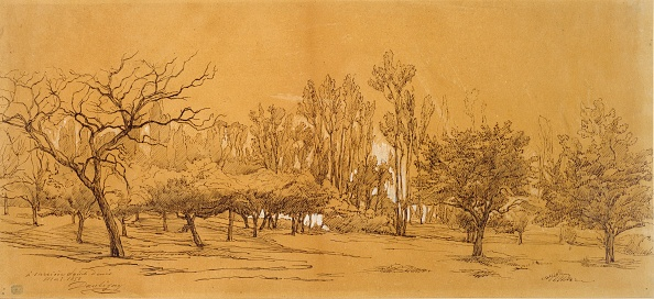 Non-Urban Scene「View Of An Orchard At Saint-Denis」:写真・画像(12)[壁紙.com]