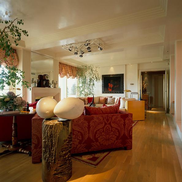 Hardwood Floor「View of an ornate in a living room」:写真・画像(1)[壁紙.com]