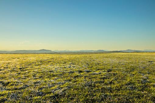 Clear Sky「Grass Hilltop」:スマホ壁紙(3)