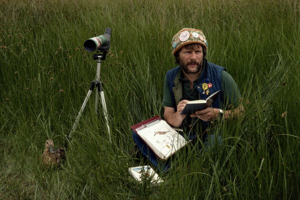 鳥「Bill Oddie」:写真・画像(6)[壁紙.com]
