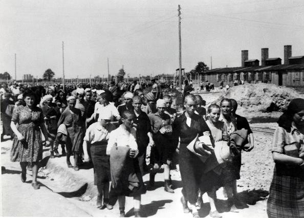 Hungarian Culture「Concentration Camp Auschwitz」:写真・画像(4)[壁紙.com]