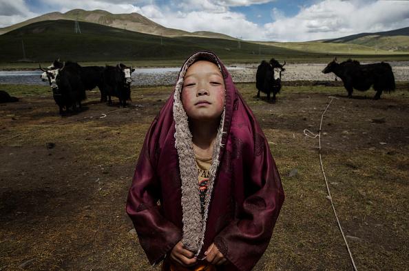 Tibet「Tibetan Nomadic Culture Faces Challenges On The Tibetan Plateau」:写真・画像(7)[壁紙.com]