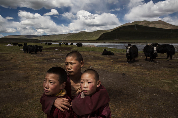 Monk - Religious Occupation「Tibetan Nomadic Culture Faces Challenges On The Tibetan Plateau」:写真・画像(14)[壁紙.com]