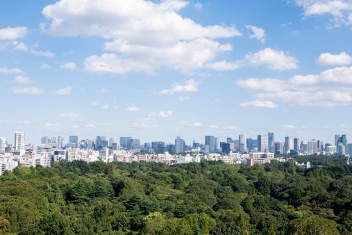 Lush Foliage「city view and green」:スマホ壁紙(1)