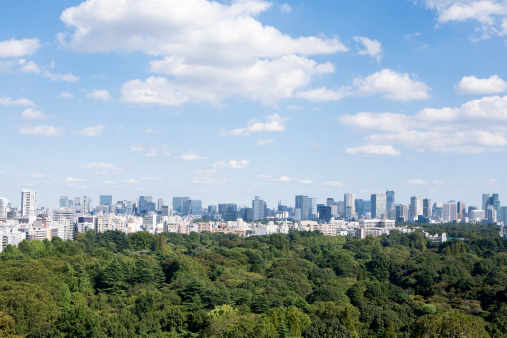 Urban Skyline「city view and green」:スマホ壁紙(8)