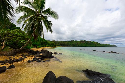 アニニビーチ「Anini Beach Kauai」:スマホ壁紙(3)