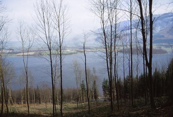 Shallow「Bassenthwaite Lake From The West」:写真・画像(6)[壁紙.com]