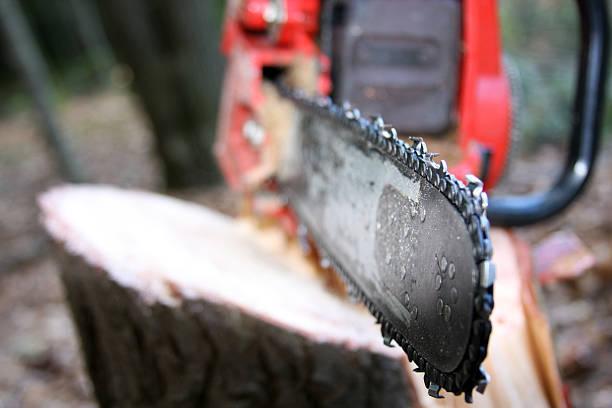 Close up of Chainsaw on a stump:スマホ壁紙(壁紙.com)