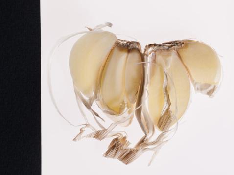 Garlic Clove「Close up of split garlic clove」:スマホ壁紙(5)