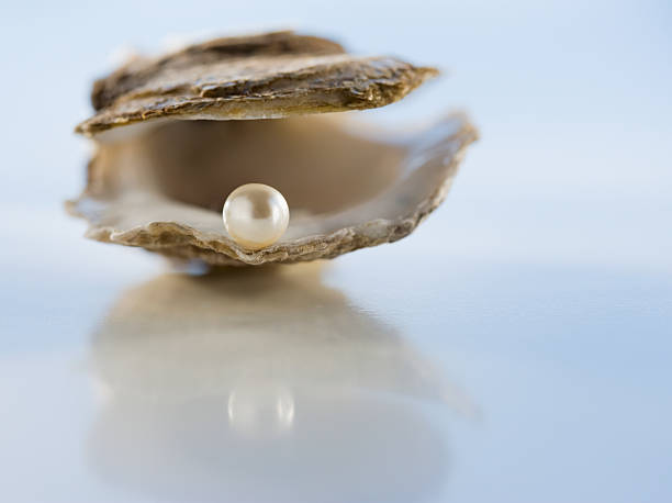 Close up of pearl in oyster shell:スマホ壁紙(壁紙.com)