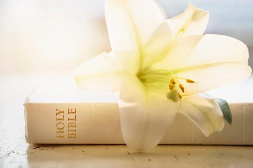 イースター「Close up of Bible and lily flower」:スマホ壁紙(13)