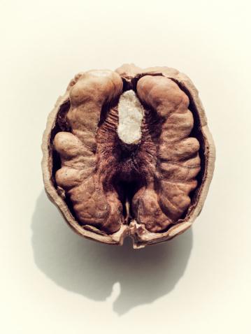 Walnut「Close up of walnut half.」:スマホ壁紙(5)