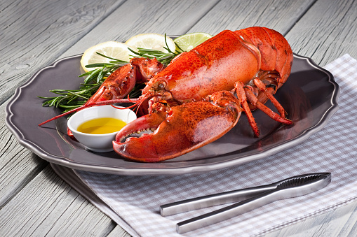 Napkin「Close up of fresh steamed lobster with herbs in grey plate」:スマホ壁紙(16)