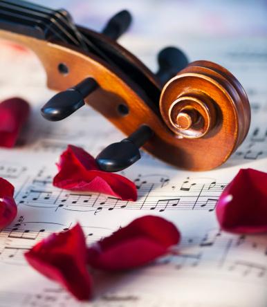 Violin「Close up of violin scroll and rose petals on sheet music」:スマホ壁紙(2)