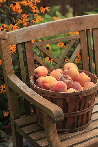 Peach「Close up of peaches in basket in bench」:スマホ壁紙(10)