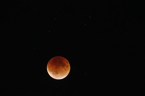 皆既月食「Super moon total lunar eclipse seen in Bloomington, Indina」:スマホ壁紙(14)