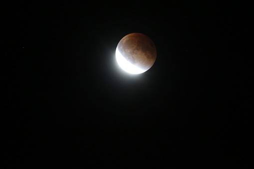 皆既月食「Super moon total lunar eclipse seen in Bloomington, Indina」:スマホ壁紙(11)