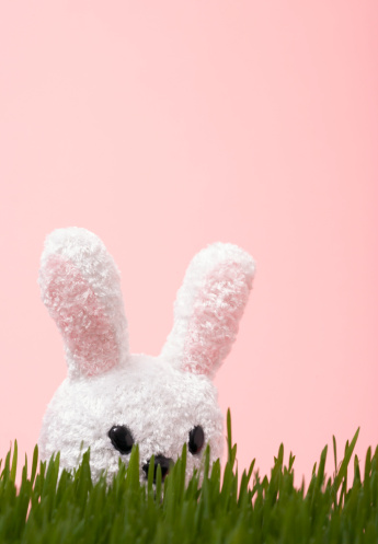 Easter Bunny「Toy bunny behind tall grass」:スマホ壁紙(14)