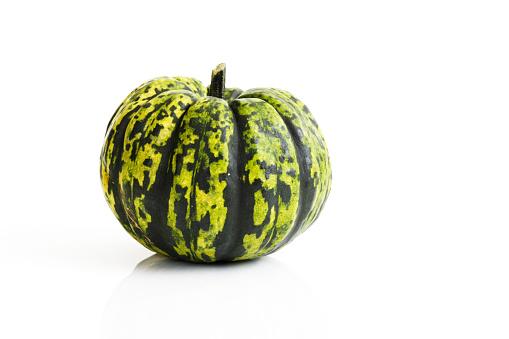 カボチャ「Chameleon pumpkin in front of white background」:スマホ壁紙(6)