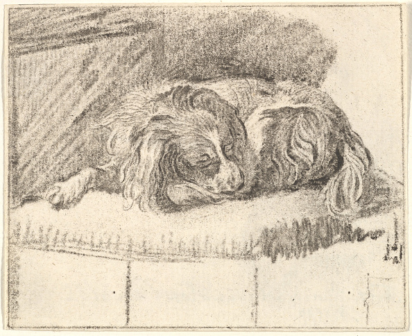 Bench「Sleeping Dog」:写真・画像(15)[壁紙.com]