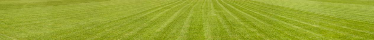 Olympic Stadium「XXXL panoramic background - Footbal Grassy Playing Field」:スマホ壁紙(12)