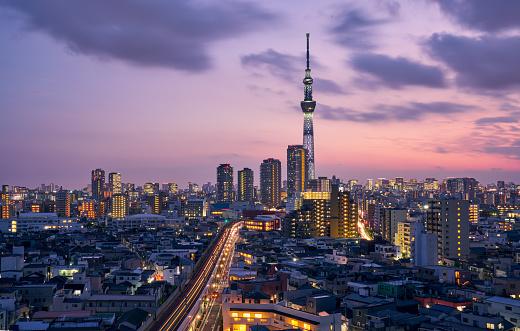 Tokyo Tower「TOKYO SKYTREE and Tokyo cityscape」:スマホ壁紙(17)