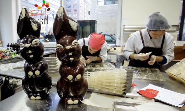 Baby Rabbit「Study Links Cocoa To Lower Blood Pressure In Men」:写真・画像(16)[壁紙.com]