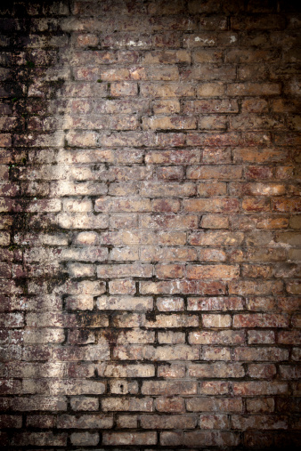 Brick Wall「Old brick wall」:スマホ壁紙(17)