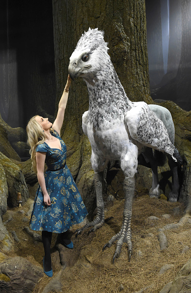 Evanna Lynch「First Look At The Forbidden Forest At Warner Bros. Studio Tour London」:写真・画像(4)[壁紙.com]