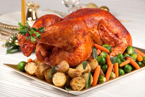 Turkey - Bird「Turkey」:スマホ壁紙(0)