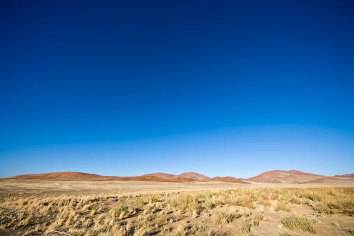 Panoramic「African Prairie Landscape」:スマホ壁紙(7)