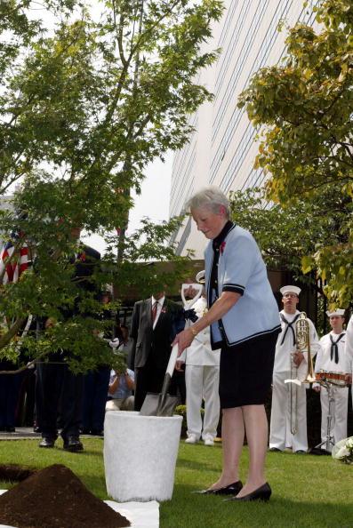 Japanese Maple「Japan Embassy Remembers September 11 」:写真・画像(19)[壁紙.com]
