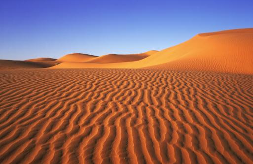 1990-1999「wind rippled sand dunes」:スマホ壁紙(2)