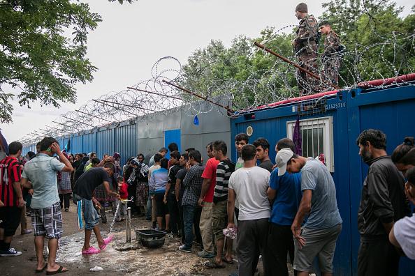 ハンガリー「Increased Numbers Of Migrants Held At Serbian Hungarian Border」:写真・画像(2)[壁紙.com]
