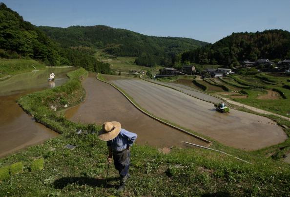 農村の風景「Planting Begins At Rice Terrace」:写真・画像(19)[壁紙.com]