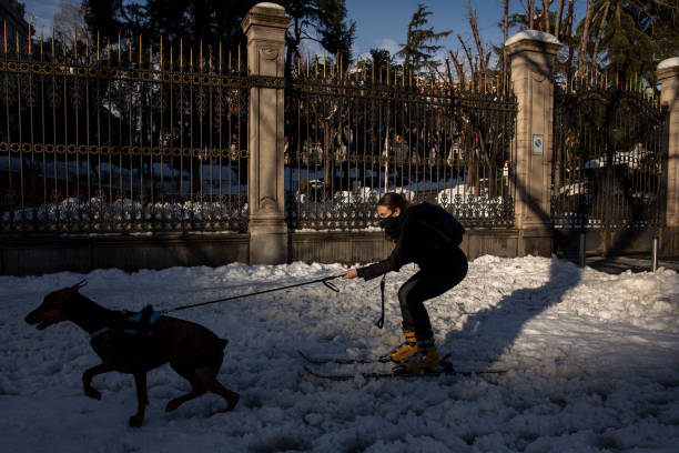 Madrid Digs Out From Exceptional Snowfall:ニュース(壁紙.com)