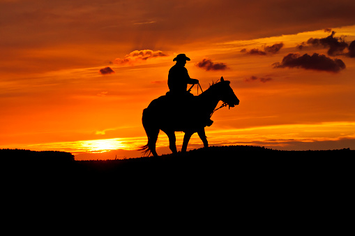 Cowboys & Aliens「Black silhouette of a cowboy riding a horse at sunset」:スマホ壁紙(18)