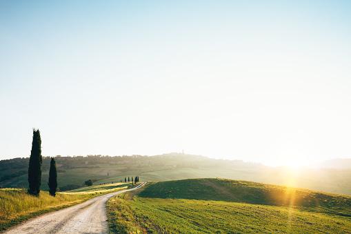 Winding Road「Road To Pienza」:スマホ壁紙(1)