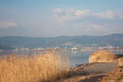 Japanese pampas grass「Lake Suwa at dawn, Nagano Prefecture, Honshu, Japan」:スマホ壁紙(18)