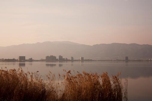 Japanese pampas grass「Lake Suwa at dawn, Nagano Prefecture, Honshu, Japan」:スマホ壁紙(1)