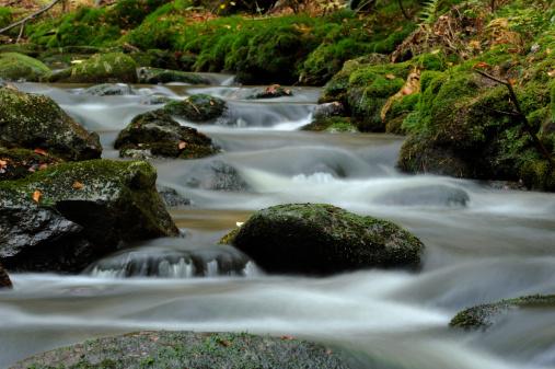 Bayerischer Wald National Park「Kleine Ohe in autumn, Bavarian Forest, Germany」:スマホ壁紙(13)