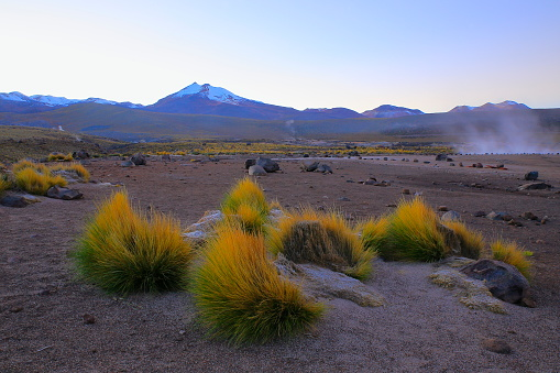 Bolivian Andes「Dramatic Landscape: Tatio Geysers fumes at dawn sunrise and Idyllic Atacama Desert steppe, snowcapped Volcanic landscape panorama – San Pedro de Atacama, Chile, Bolívia and Argentina border」:スマホ壁紙(7)