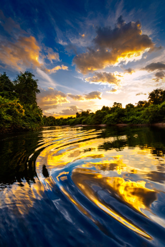 Amazon Rainforest「Dramatic landscape on a river in the amazon state Venezuela」:スマホ壁紙(5)